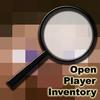http://img.niceminecraft.net/BukkitPlugin/OpenPlayerInventory.png