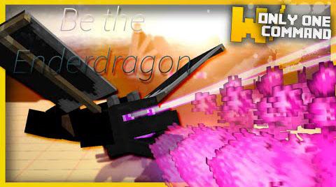 Ender-Dragon-Disguise-Command-Block.jpg