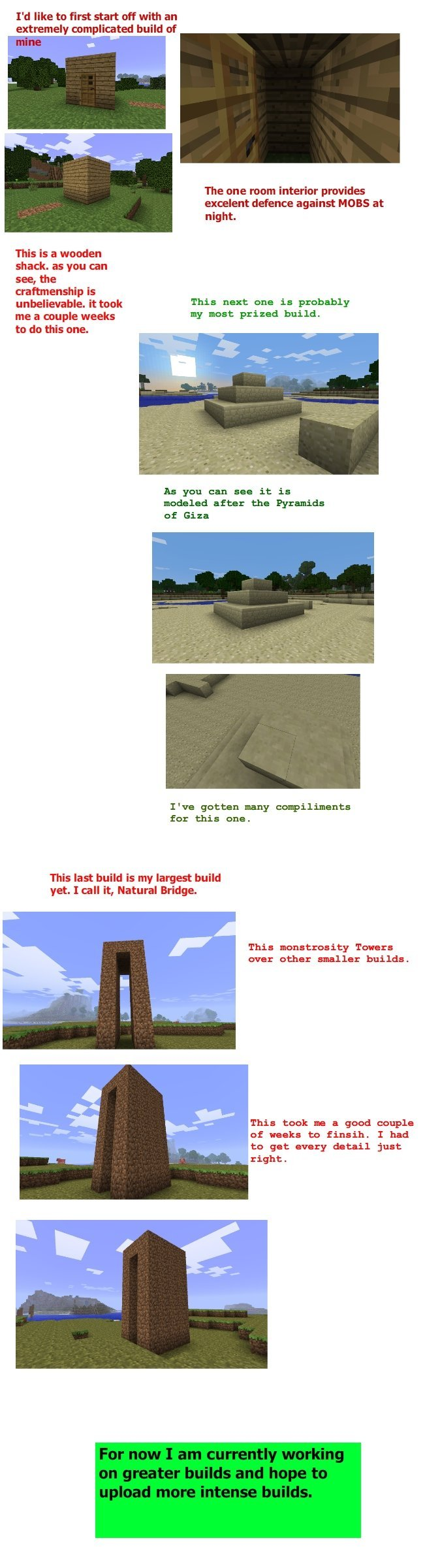 http://img.niceminecraft.net/Funny/Epic-Minecraft-builds.jpg