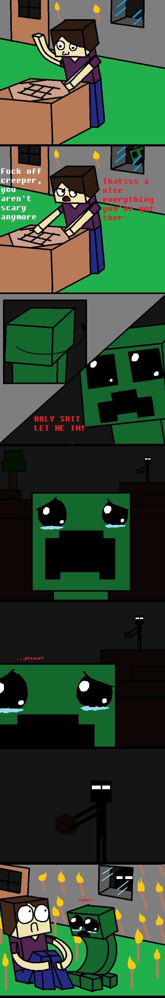 http://img.niceminecraft.net/Funny/Funny-enderman.jpg