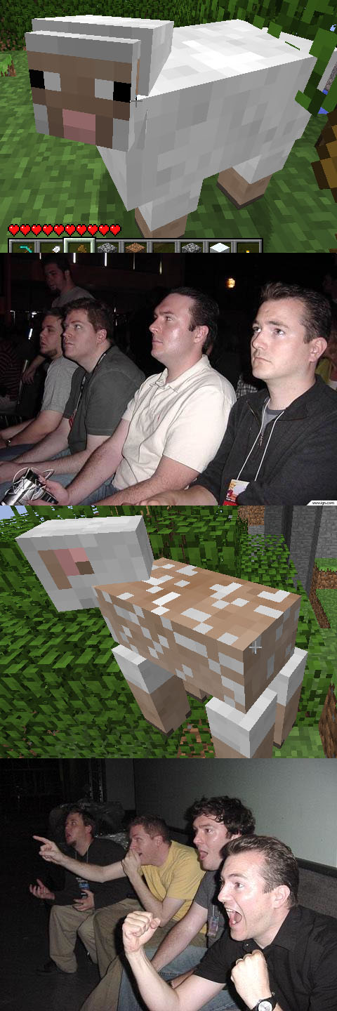 http://img.niceminecraft.net/Funny/Minecraft-Sheep-Guys.jpg