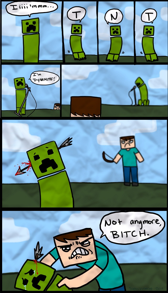 http://img.niceminecraft.net/Funny/Minecraft-comic-16.jpg