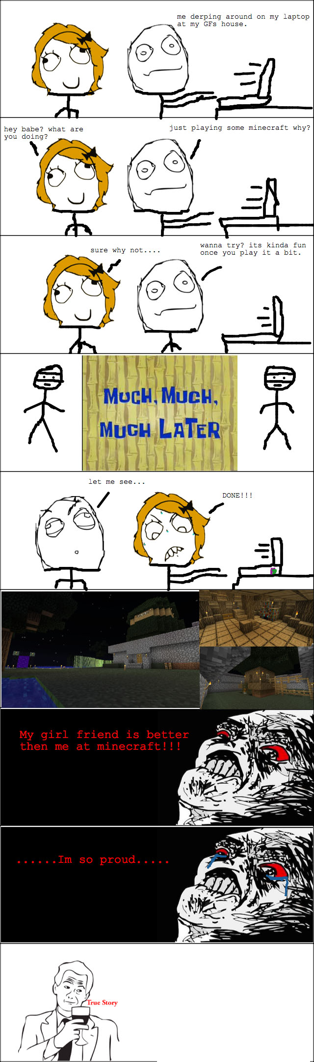 http://img.niceminecraft.net/Funny/True-Story-5.jpg