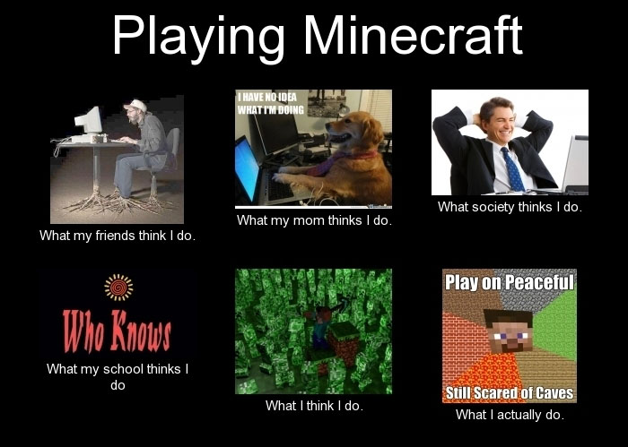 http://img.niceminecraft.net/Funny/True-Story-6.jpg