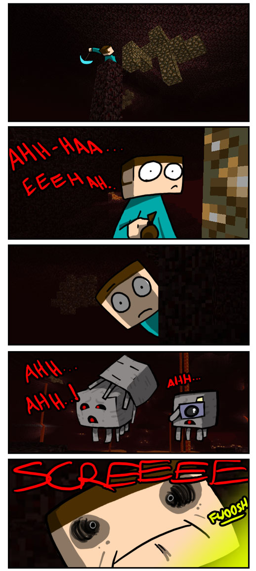 http://img.niceminecraft.net/Funny/True-Story-7.jpg