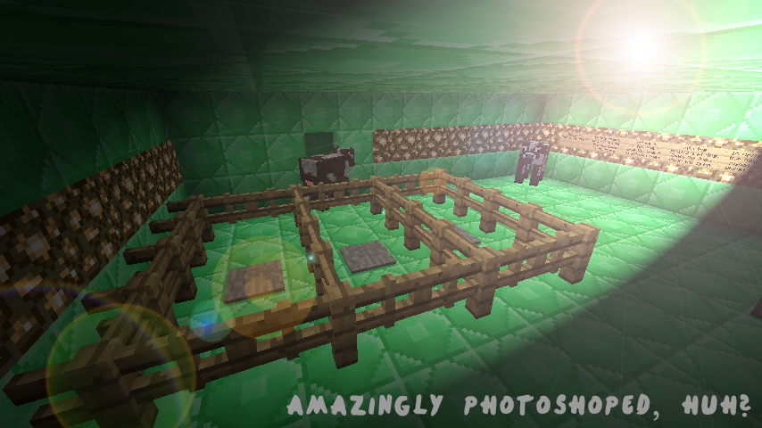 http://img.niceminecraft.net/Map/Emerald-Puzzle-Map-11.png