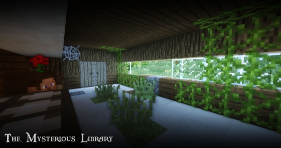 http://img.niceminecraft.net/Map/The-Mysterious-Library-Map-4.jpg