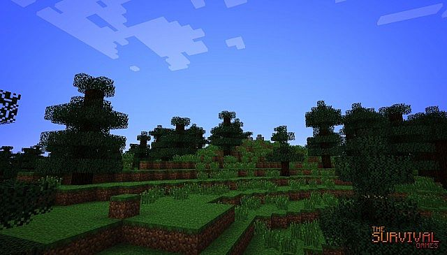http://img.niceminecraft.net/Map/The-Survival-Games-Map-5.jpg