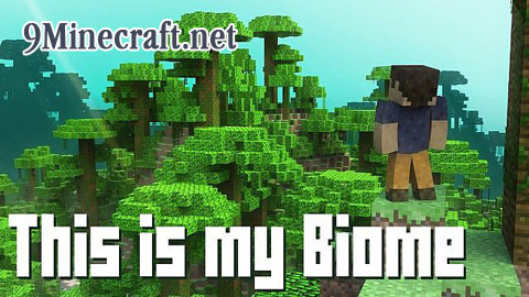 http://img.niceminecraft.net/Map/This-is-my-Biome-Map.jpg