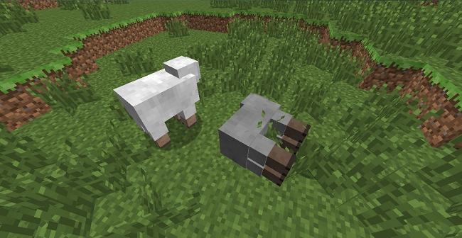 http://img.niceminecraft.net/Mods/Alpaca-Evolution-Mod-4.jpg