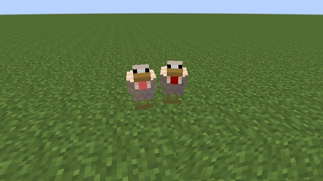 Better-Breeds-Mod-1.jpg