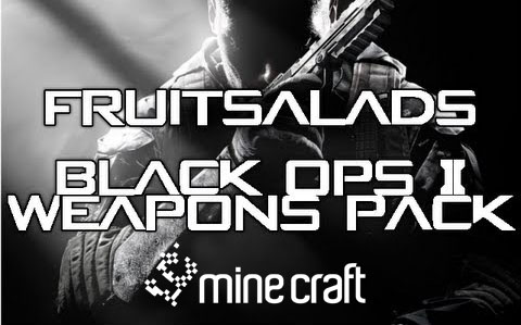 http://img.niceminecraft.net/Mods/Black-Ops-2-Weapons-Pack.jpg
