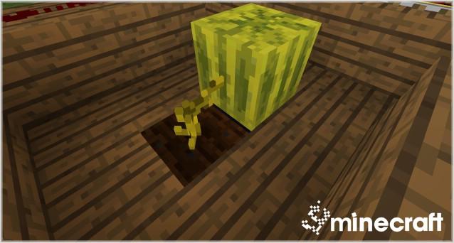 http://img.niceminecraft.net/Mods/Blocks-3D-Mod-6.jpg