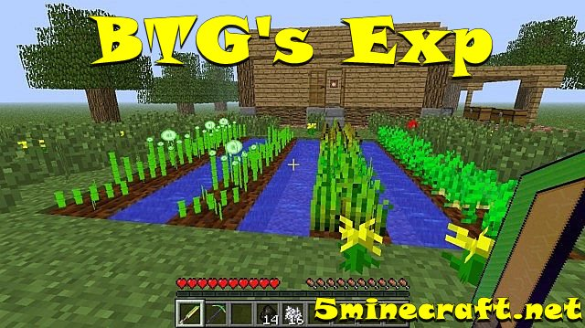 Btgs-exp-mod-1.jpg