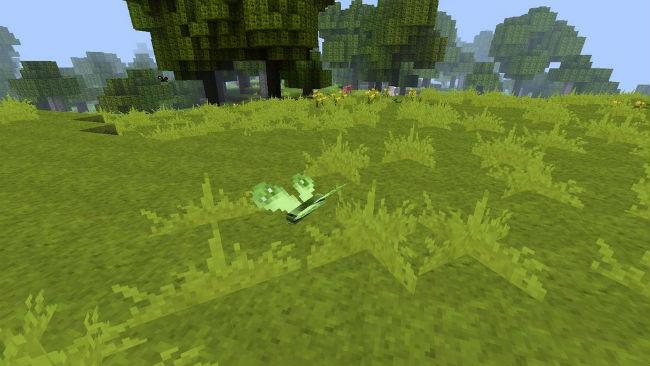 Butterfly-Mania-Mod-3.jpg