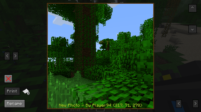 http://img.niceminecraft.net/Mods/CameraCraft-Mod-5.png