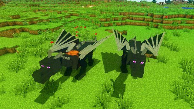 Dragon-Mounts-Mod-3.jpg