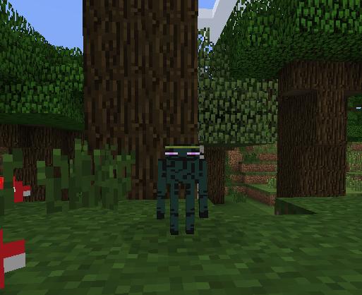 Ender-Zoo-Mod-1.jpg