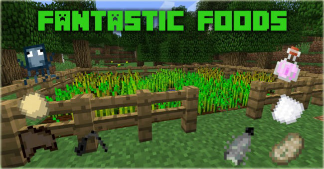 Fantastic-Foods-Mod-1.jpg