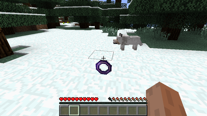 http://img.niceminecraft.net/Mods/Flying-Ring-Mod-1.png