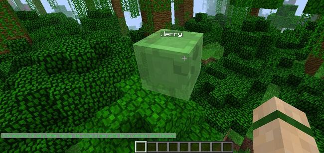 Jerrys-Mod-1.jpg