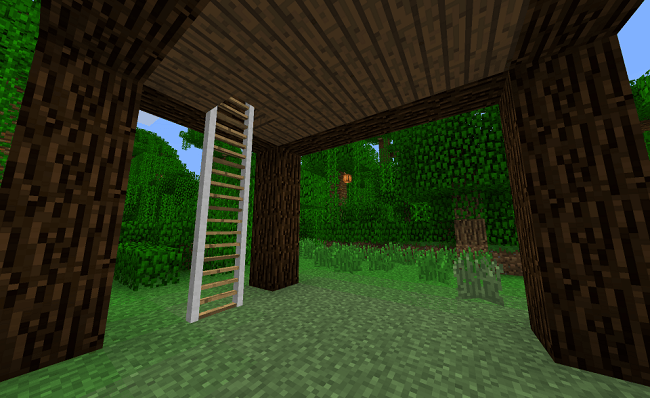 Ladders-Mod-1.jpg