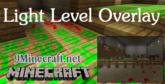 http://img.niceminecraft.net/Mods/Light-Level-Overlay-Mod.jpg