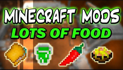 http://img.niceminecraft.net/Mods/Lots-of-Food-Mod.jpg