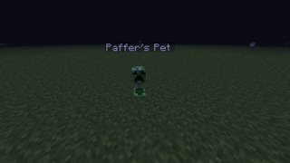http://img.niceminecraft.net/Mods/Mini-Creeper-Pet-Mod-1.jpg