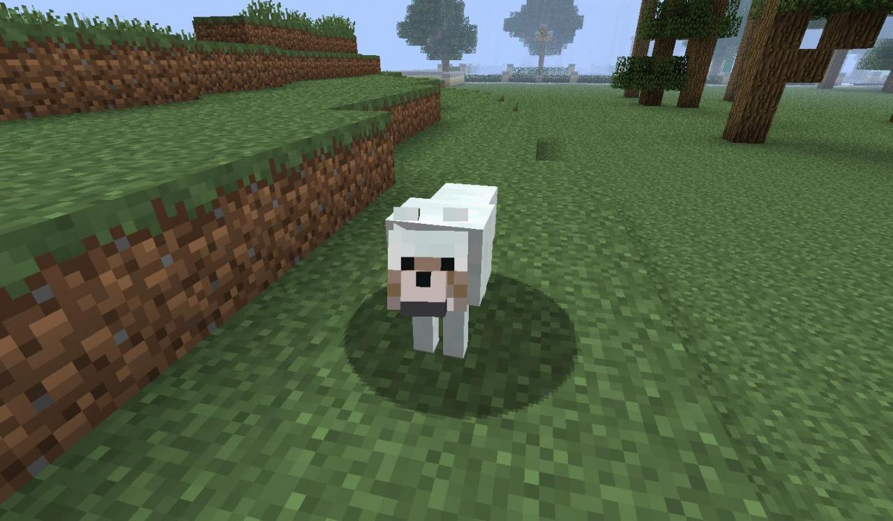 http://img.niceminecraft.net/Mods/More-Wolves-Mod-3.jpg
