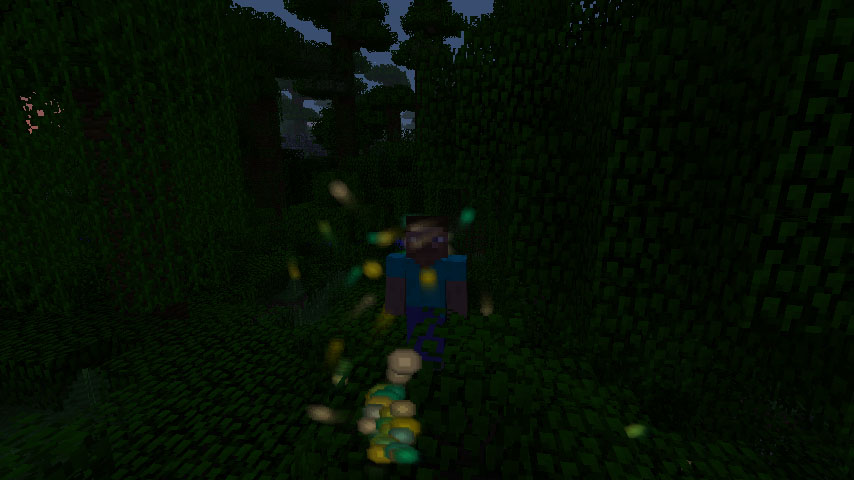 http://img.niceminecraft.net/Mods/Motion-Blur-Mod-1.jpg
