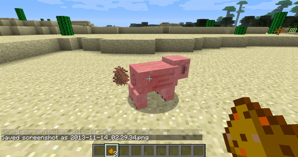 http://img.niceminecraft.net/Mods/My-Buddy-Porkchop-Mod-1.jpg