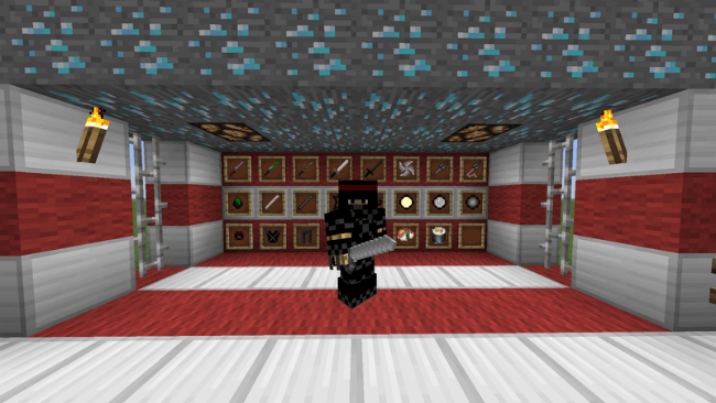 Ninja-Mod-2.png