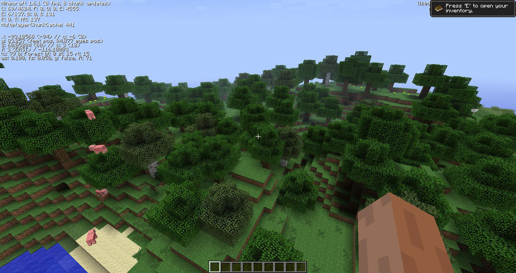 http://img.niceminecraft.net/Mods/OptiLeaves-Mod-1.jpg