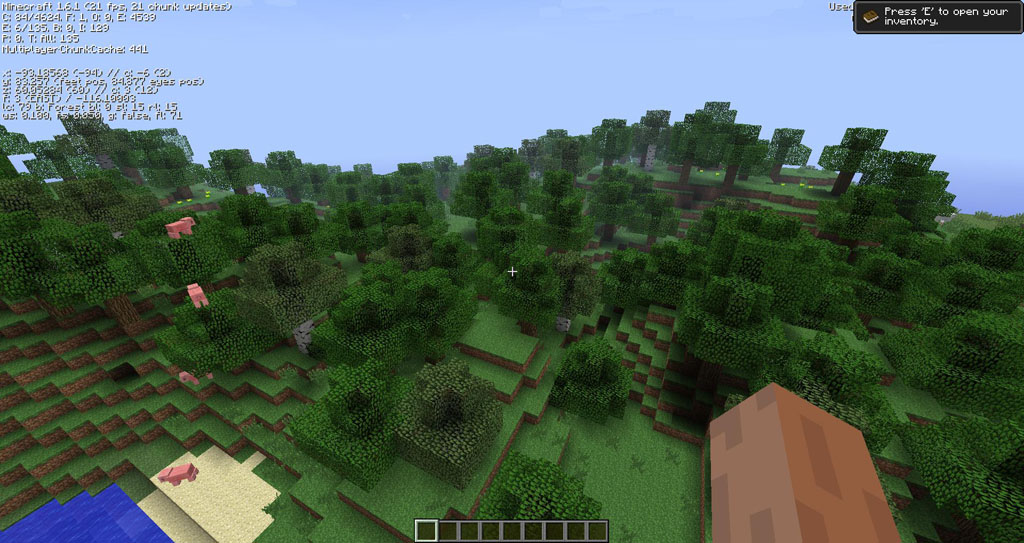http://img.niceminecraft.net/Mods/OptiLeaves-Mod-2.jpg