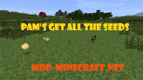 http://img.niceminecraft.net/Mods/Pams-Get-all-the-Seeds-Mod.jpg