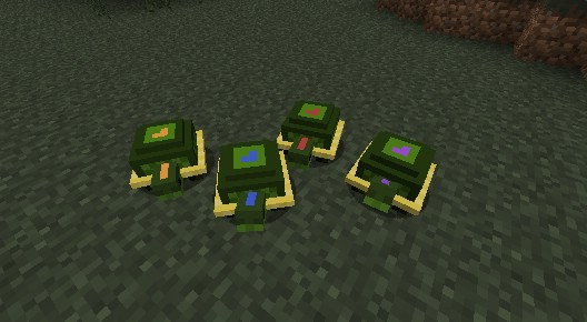 Pet-Turtles-Mod-7.jpg