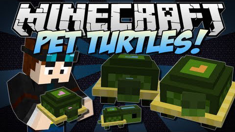 Pet-Turtles-Mod.jpg