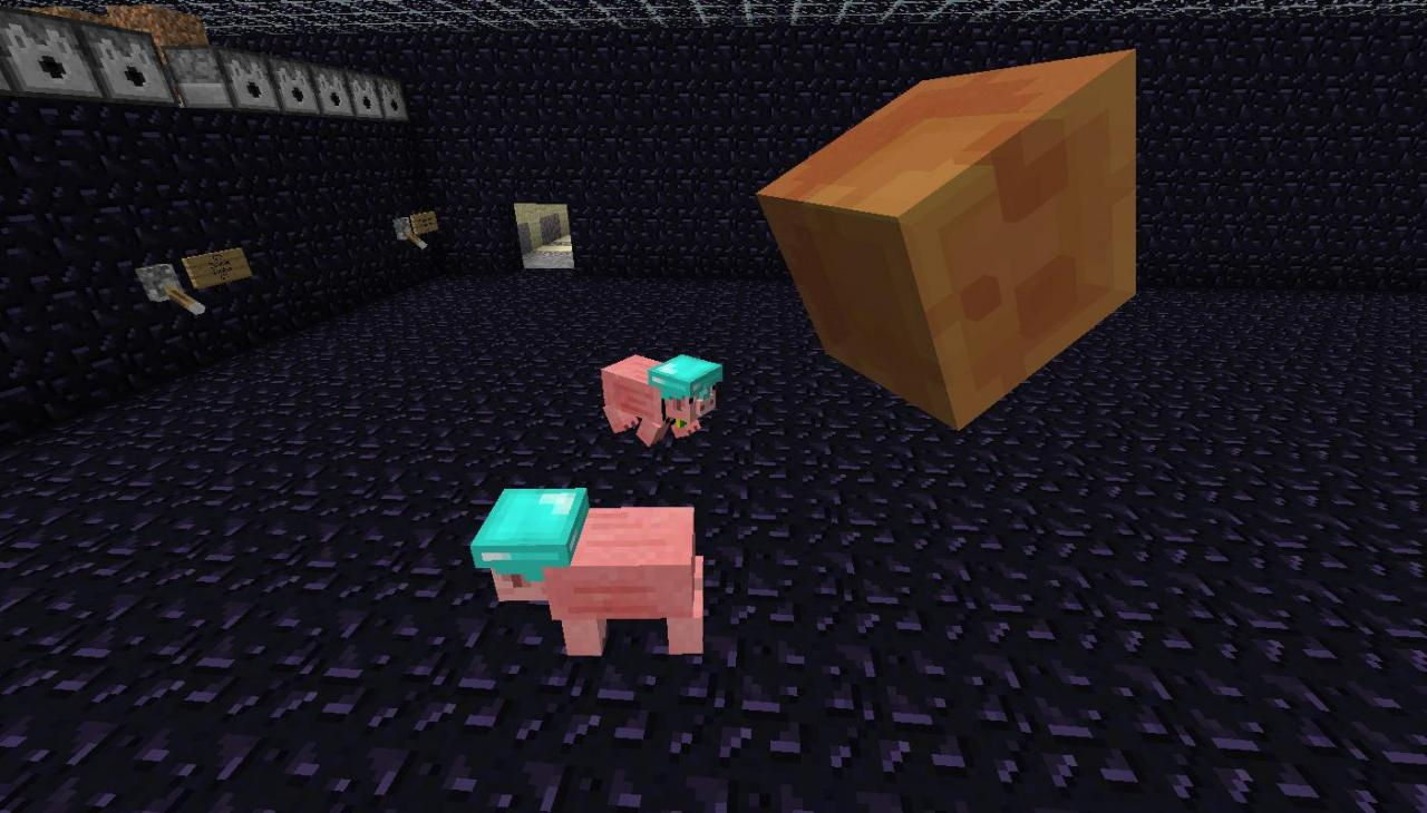 http://img.niceminecraft.net/Mods/Pig-Companion-Mod-4.jpg