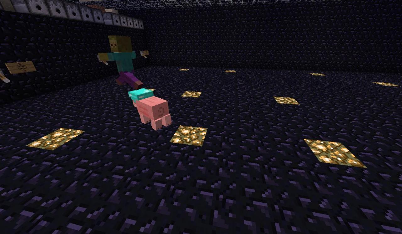 http://img.niceminecraft.net/Mods/Pig-Companion-Mod-5.jpg