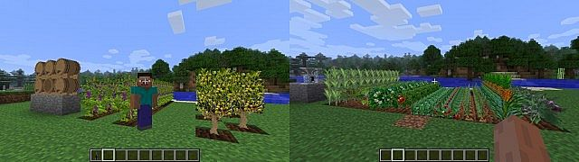 http://img.niceminecraft.net/Mods/Plants-and-Food-Mod-1.jpg