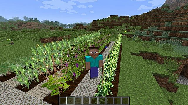 http://img.niceminecraft.net/Mods/Plants-and-Food-Mod-3.jpg