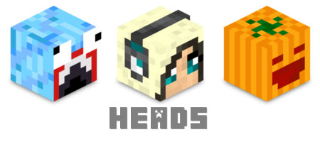 http://img.niceminecraft.net/Mods/Player-Heads-Mod.jpg