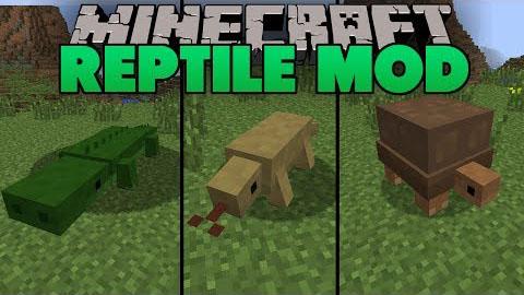 http://img.niceminecraft.net/Mods/Reptile-Mod.jpg