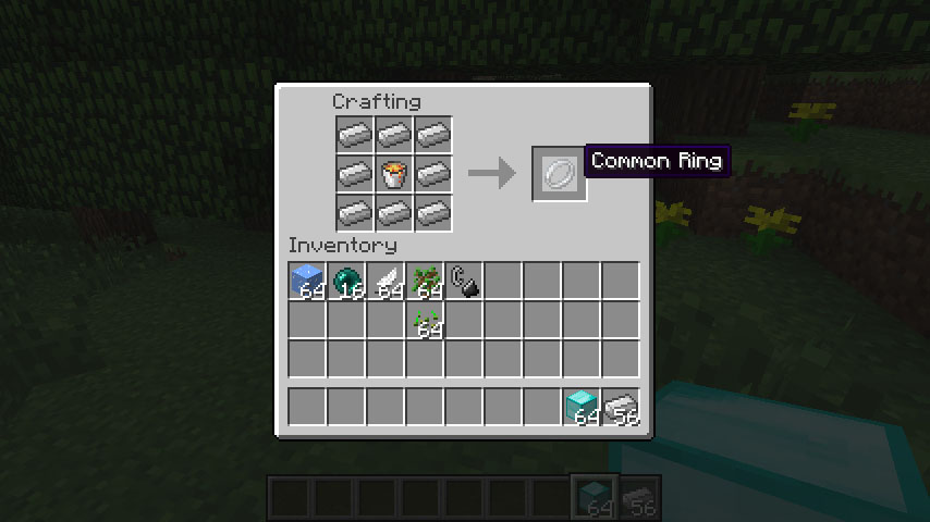 http://img.niceminecraft.net/Mods/Rings-of-Power-Mod-2.jpg