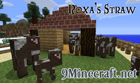 Roxa-Straw-Mod.jpg