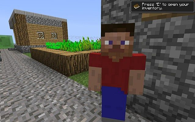 http://img.niceminecraft.net/Mods/Steve-Villagers-Mod-3.jpg