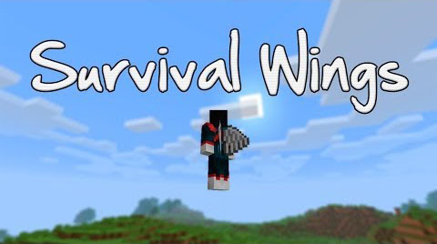 http://img.niceminecraft.net/Mods/Survival-Wings-Mod.jpg