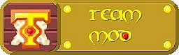 Team-mod.jpg