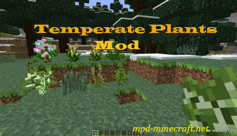 Temperate-Plants-Mod.jpg